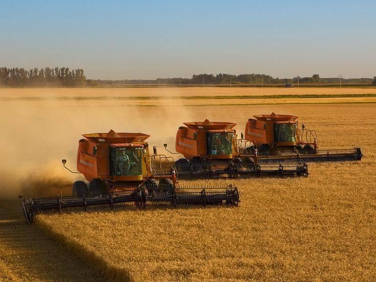 Trzy maszyny rolnicze napolu